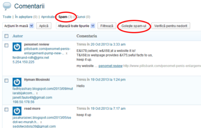 Stergere comentarii spam in wordpress