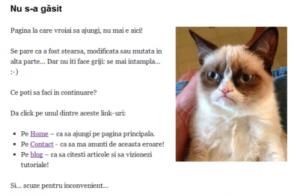 Pagina de eroare 404 personalizata